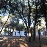 Appartamenti al freso della pineta nel villaggio La Serra