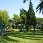 particolare del giardino del Villaggio La Serra