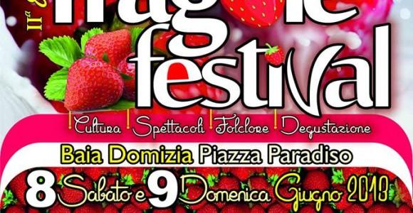 Manifesto Fragole Festival 2013