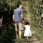 I vini di Masseria Felicia