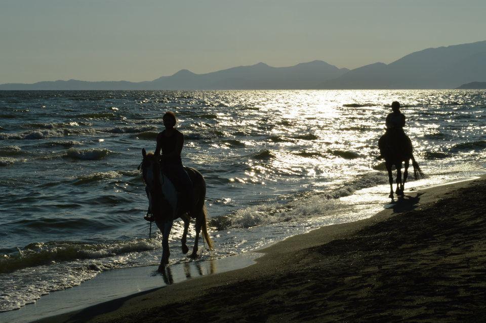 P c ranch passeggiate a cavallo e corsi d 39 equitazione a for Piccoli progetti di ranch